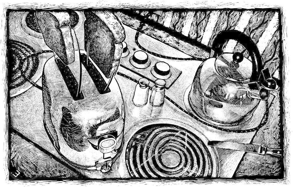 epkes-hedge-Kitchen-stove.jpg